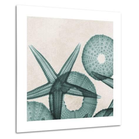 Under the Sea 5-Albert Koetsier-Metal Print