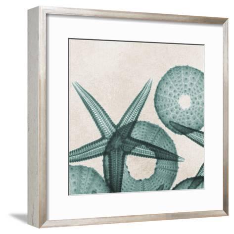 Under the Sea 5-Albert Koetsier-Framed Art Print