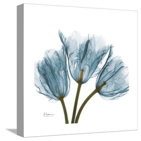 Tulips in Blue-Albert Koetsier-Stretched Canvas Print