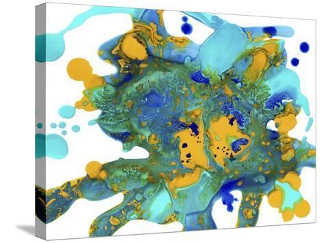 Sea Life Fantasy-Amy Vangsgard-Stretched Canvas Print