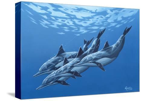 Swimming with the Dolphins-Apollo-Stretched Canvas Print