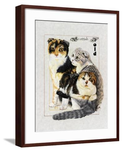 Scottish Fold-Barbara Keith-Framed Art Print
