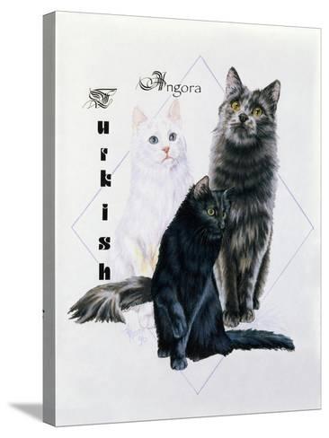 Turkish Angora-Barbara Keith-Stretched Canvas Print