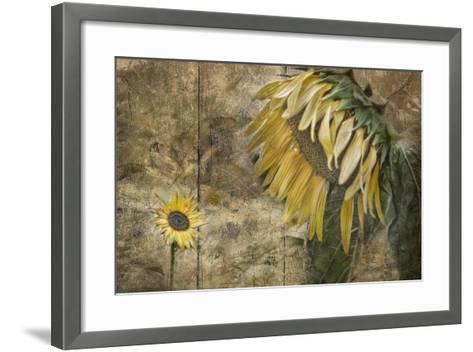 Momma Said-Barbara Simmons-Framed Art Print