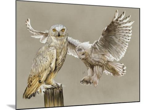 Halcyon-Barbara Keith-Mounted Giclee Print