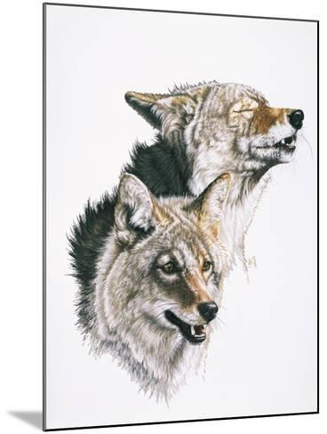 Nature's Minstral-Barbara Keith-Mounted Giclee Print