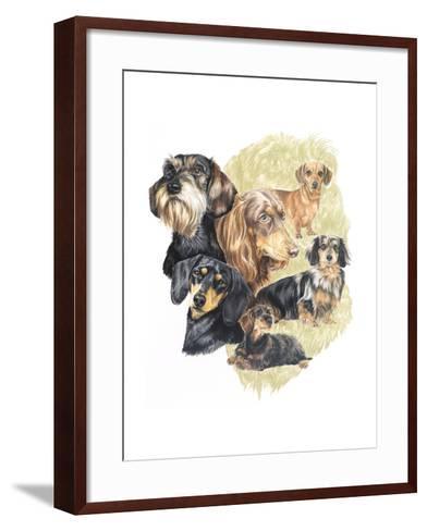 Dachshund-Barbara Keith-Framed Art Print