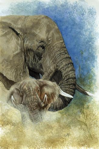 Stalwart-Barbara Keith-Stretched Canvas Print