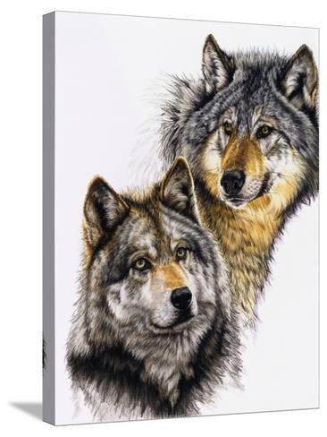 Splendid Companions-Barbara Keith-Stretched Canvas Print
