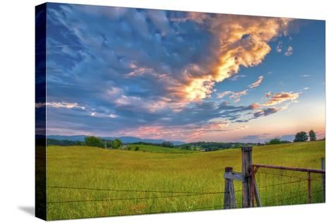 branch's sunset-Bob Rouse-Stretched Canvas Print