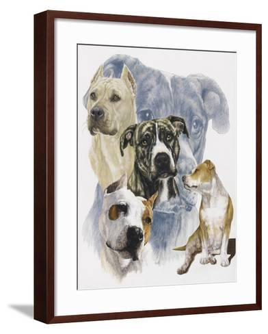 American Staffordshire Terrier-Barbara Keith-Framed Art Print