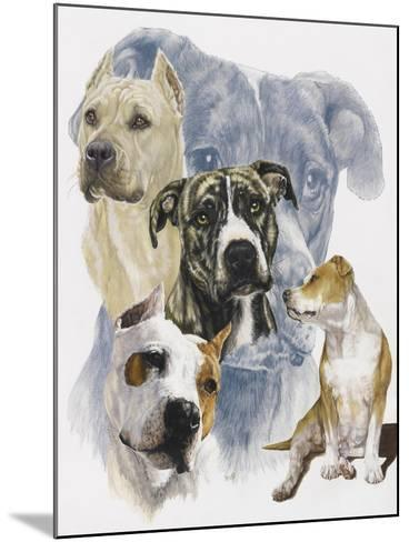 American Staffordshire Terrier-Barbara Keith-Mounted Giclee Print