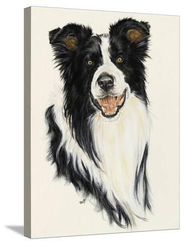 Border Collie-Barbara Keith-Stretched Canvas Print