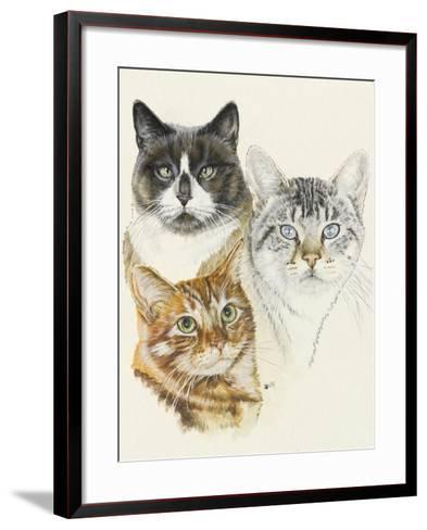 American Shorthair-Barbara Keith-Framed Art Print