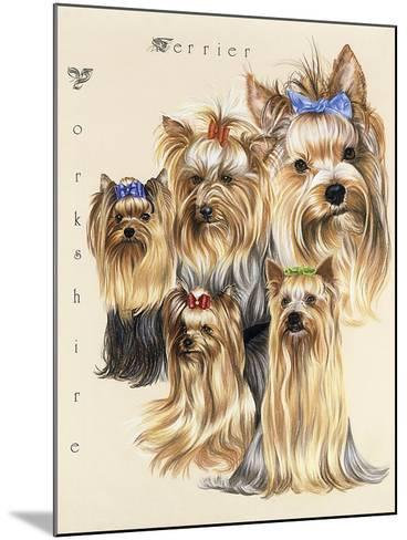 Terrier-Barbara Keith-Mounted Giclee Print