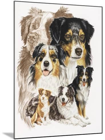 Australian Shepherds-Barbara Keith-Mounted Giclee Print