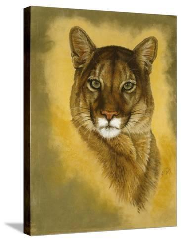 Mystical Encounter-Barbara Keith-Stretched Canvas Print