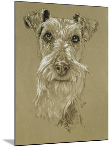 Irish Terrier-Barbara Keith-Mounted Giclee Print