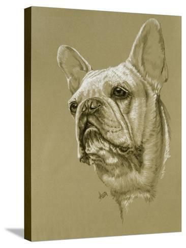 French Bulldog-Barbara Keith-Stretched Canvas Print