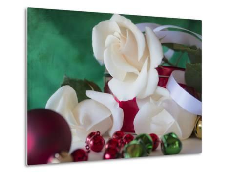 Holiday White-Bob Rouse-Metal Print