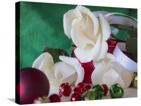 Holiday White-Bob Rouse-Stretched Canvas Print