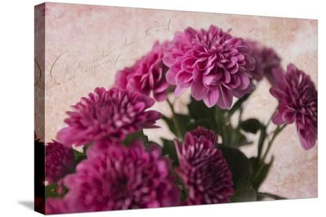 Lots of Pink-Bob Rouse-Stretched Canvas Print
