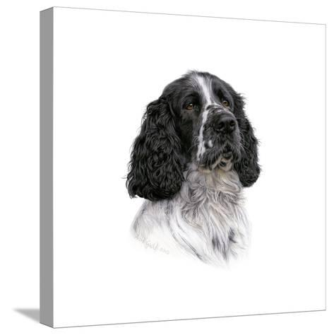 Barney-Aron Gadd-Stretched Canvas Print