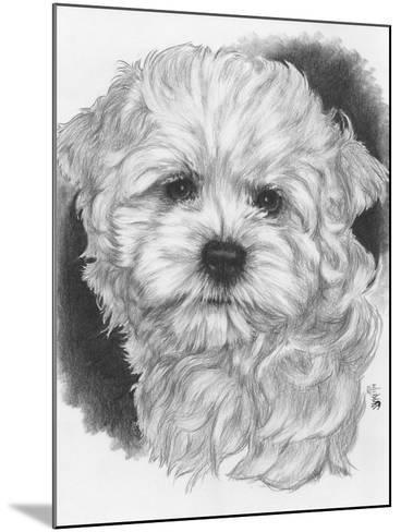 Maltichon-Barbara Keith-Mounted Giclee Print