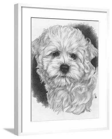 Maltichon-Barbara Keith-Framed Art Print