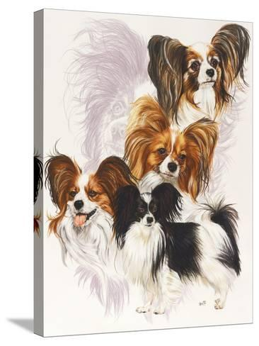Papillion-Barbara Keith-Stretched Canvas Print