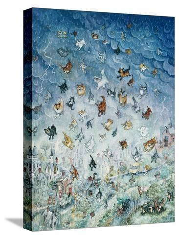 Raining Cats and Dogs-Bill Bell-Stretched Canvas Print