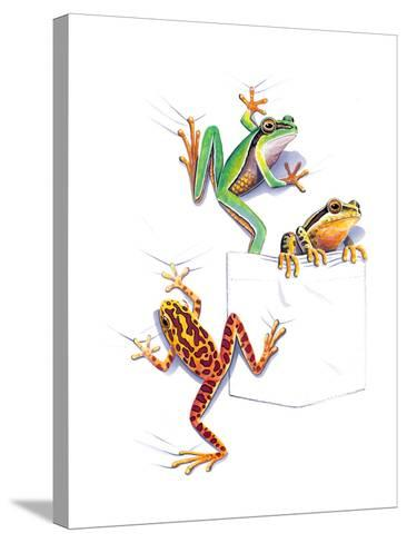 Frogs--Stretched Canvas Print