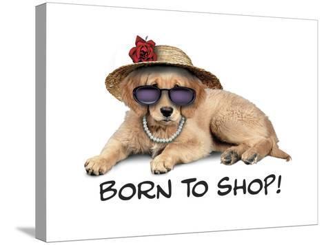 Shop Pup--Stretched Canvas Print