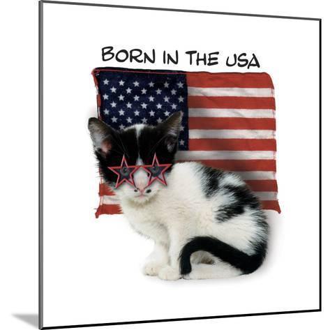 Born in USA--Mounted Giclee Print