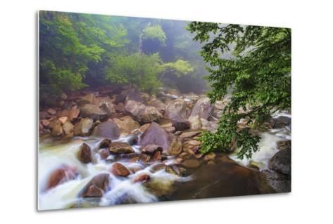 Around the Boulders-Bob Rouse-Metal Print