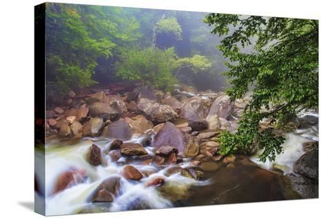 Around the Boulders-Bob Rouse-Stretched Canvas Print