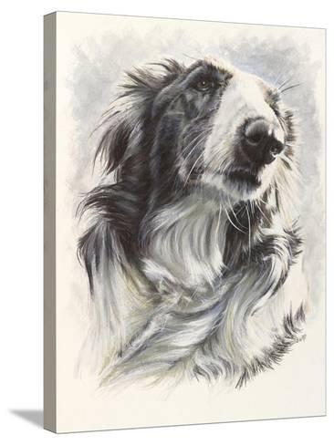 Borzoi-Barbara Keith-Stretched Canvas Print