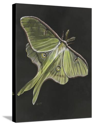 Luna-Barbara Keith-Stretched Canvas Print