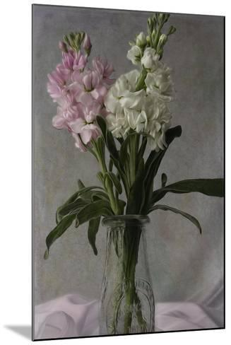 Pink and White Stock 2-Bob Rouse-Mounted Giclee Print