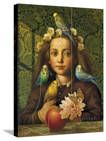 Girl with Parakeets-Dan Craig-Stretched Canvas Print