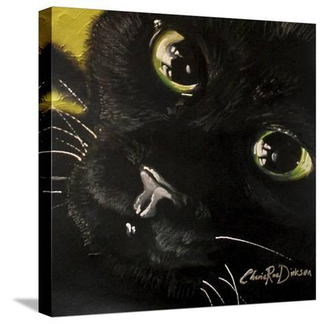 Cat's Eyes-Cherie Roe Dirksen-Stretched Canvas Print