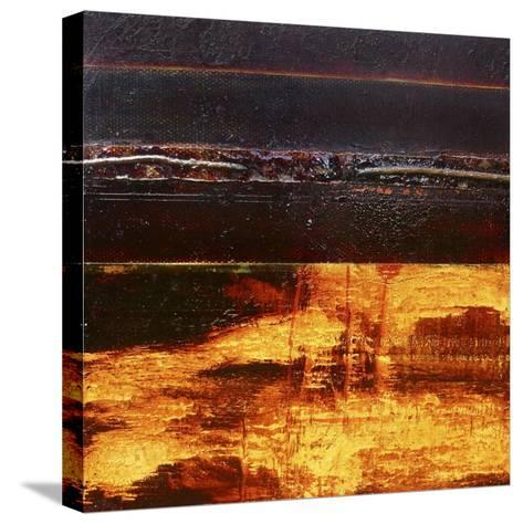 Earth-David Spencer-Stretched Canvas Print