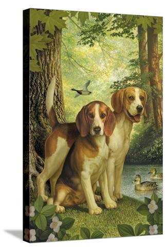Beagles and Duck-Dan Craig-Stretched Canvas Print