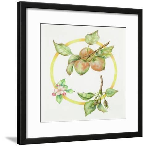 Apple Cycle-Deborah Kopka-Framed Art Print