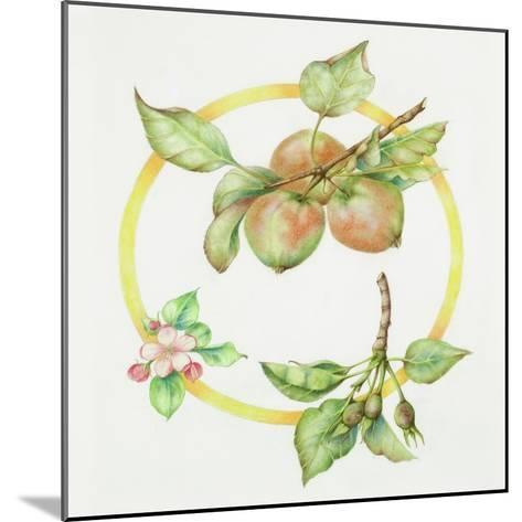 Apple Cycle-Deborah Kopka-Mounted Giclee Print
