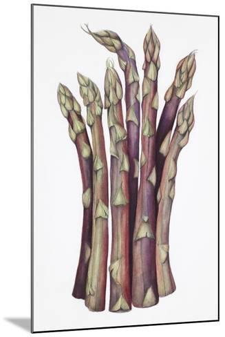 Asparagus-Deborah Kopka-Mounted Giclee Print