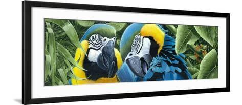 Blue and Yellow Macaws-Durwood Coffey-Framed Art Print