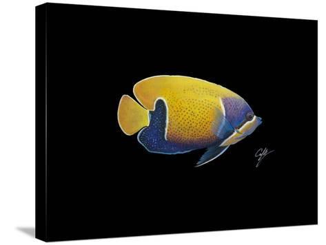Blue Girdled Angel-Durwood Coffey-Stretched Canvas Print
