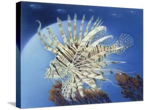 Lion Fish-Durwood Coffey-Stretched Canvas Print