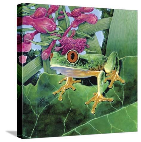 Calli-Durwood Coffey-Stretched Canvas Print